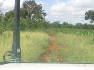 Ikke akkurat motorvei dit vi er på vei. Zimbabwe 2009.